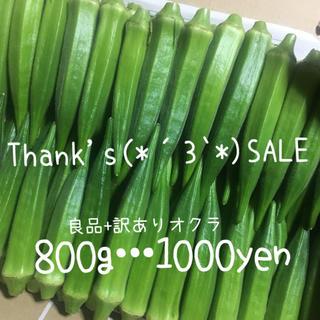 沖縄県産  産地直送 採れたて新鮮 感謝SALE☆(野菜)