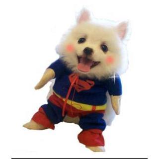 【大人気☆】ペット服  スーパーマン  二足歩行コスチューム (犬)