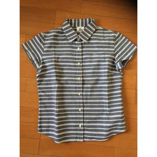 ラコステ(LACOSTE)のラコステ シャツ レディース40(シャツ/ブラウス(半袖/袖なし))