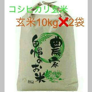 7月23日発送29年度滋賀のコシヒカリ玄米20kg 10kg✖2袋お米送込