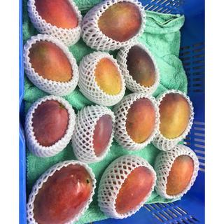 沖縄県産‼︎家庭用マンゴー1キロ