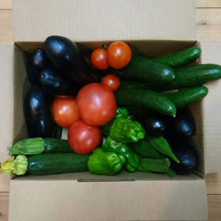 低農薬野菜詰め合わせ