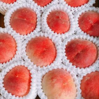 和歌山の美味しい桃 12~18玉 (訳あり)