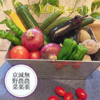 【朝採り新鮮京野菜】コンパクトお試し