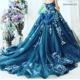 ヴェラウォン(Vera Wang)のお値下げ ステラデリベロ ドレス(ウェディングドレス)