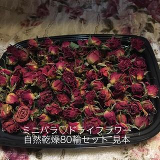 ミニバラ ドライフラワー★D自然乾燥80輪セット★ミニ薔薇♡Sakura様専用★(ドライフラワー)