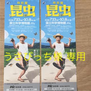 特別展 昆虫  招待券2枚(美術館/博物館)