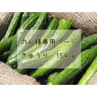 のん様専用ページ No,1(野菜)