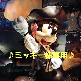 ディズニー(Disney)の♪ミッキー様専用♪ ラゲッジタグ シンデレラ城(キャラクターグッズ)