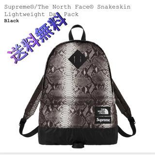 シュプリーム(Supreme)の込 north face day pack supreme ノース (バッグパック/リュック)