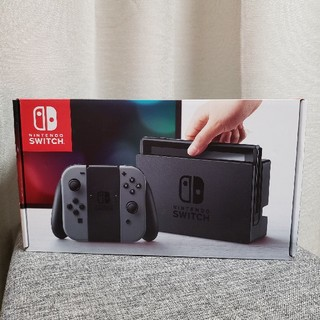 Nintendo Switch - 【極美品!】Nintendo Switch 本体 グレー
