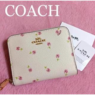 コーチ(COACH)の【新品 未使用】COACH コーチ 花柄 財布 二つ折財布 デイジー スモール(財布)