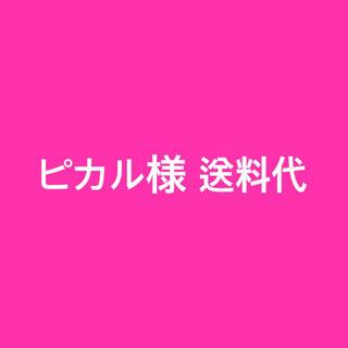 パナソニック(Panasonic)の専用 ピカル様送料代1555円(その他)