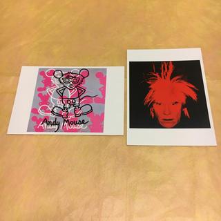 アンディウォーホル(Andy Warhol)のアンディウォーホル ポストカード 2枚(絵画/タペストリー)