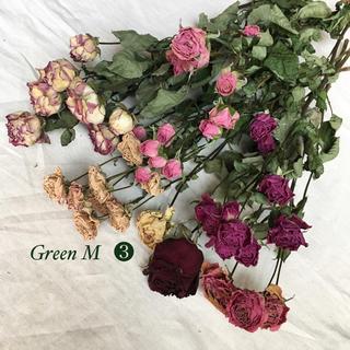 薔薇のドライフラワー約42個のミックスセット【53】(ドライフラワー)