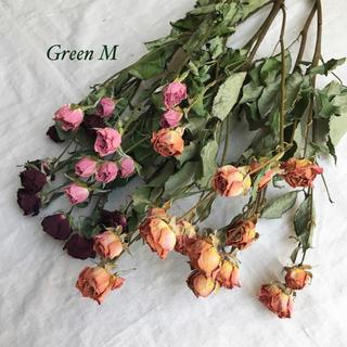 薔薇のドライフラワー約33個のミックスセット【77】(ドライフラワー)