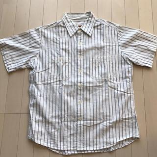 カムコ(camco)の◆カムコ camco ストライプシャツ◆(シャツ)
