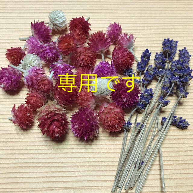 千日紅・ラベンダー ドライフラワー ハンドメイドのフラワー/ガーデン(ドライフラワー)の商品写真