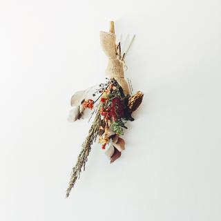 ヒマワリとブラシの木のサファリカラースワッグ(ドライフラワー)
