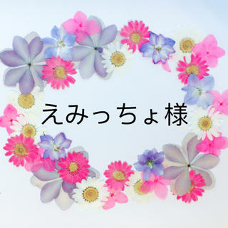えみっちょ様(スマホケース)