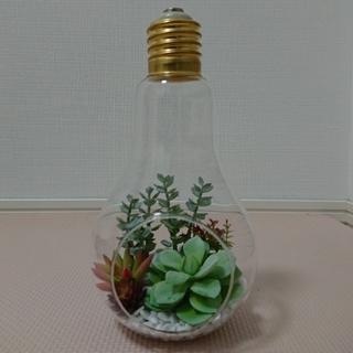フランフラン(Francfranc)のフランフラン 照明 植物(その他)