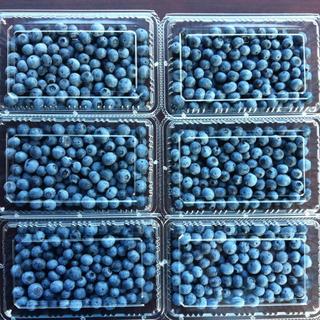ブルーベリー 1.2キロ(フルーツ)