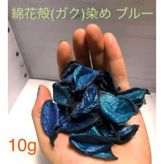 綿花  コットンフラワー  殻  ブルー染め(ドライフラワー)