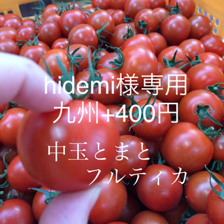 hidemi様専用 フルティカ2キロ(野菜)