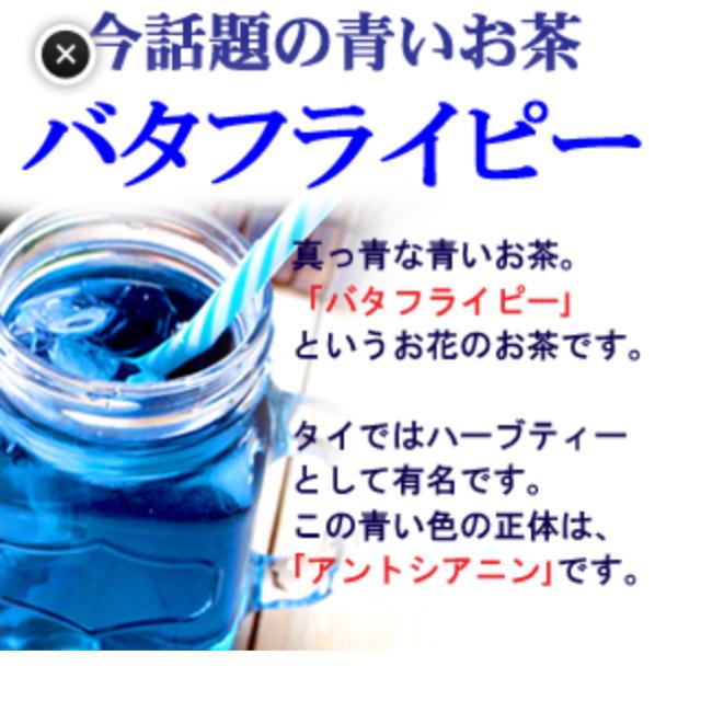 バタフライピー 食品/飲料/酒の飲料(茶)の商品写真