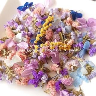 お買い得✨たっぷり入った♡ドライフラワー スターチス プリザ紫陽花 花びらパック(ドライフラワー)