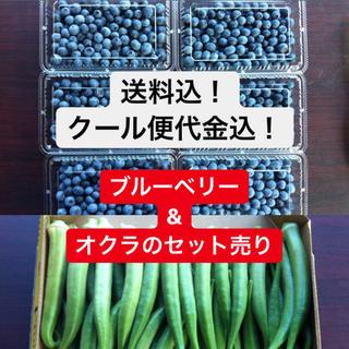 ブルーベリー&オクラ(野菜)