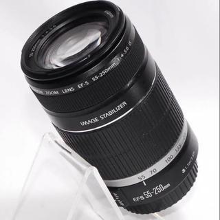 キヤノン(Canon)の⭐️もっと遠くへ⭐️Canon 55-250mm 望遠レンズ・美品(レンズ(ズーム))