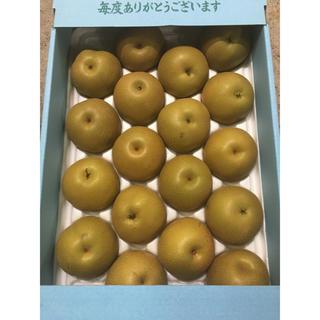 熊本県産  梨  【豊水】1箱約5kg玉 (家庭用)(野菜)