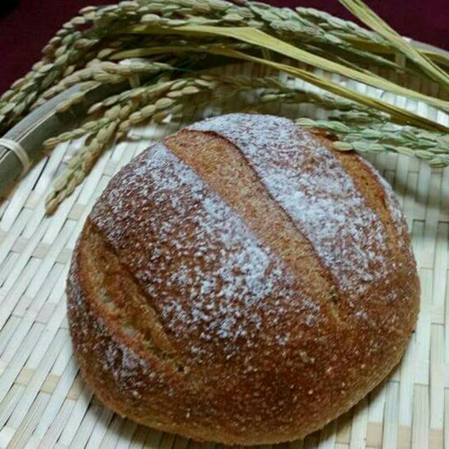 米糠カンパーニュ 食品/飲料/酒の食品(パン)の商品写真