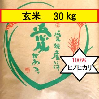 🍀お米 令和元年 愛媛県産ヒノヒカリ 玄米 30㎏(米/穀物)