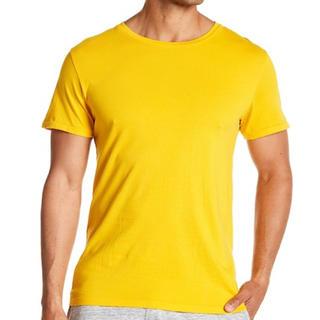 オルタナティブ(ALTERNATIVE)の新品 Alternative オルタナティブ メンズ 無地Tシャツ 海外購入(Tシャツ/カットソー(半袖/袖なし))