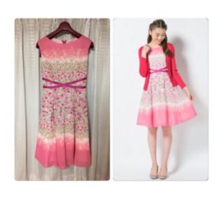 トッカ(TOCCA)のTOCCA 【洗えるドレス】CINERARIAドレス(ひざ丈ワンピース)