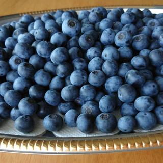 無農薬 有機栽培 大粒 ブルーベリー 1KG (※関東、東海、関西地区限定)(フルーツ)