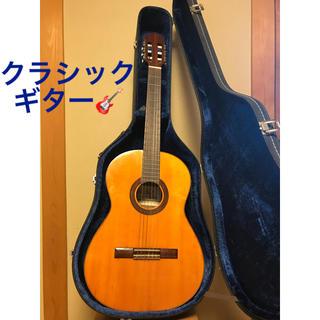 クラシックギター(クラシックギター)