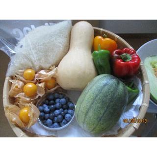 無農薬野菜とブルーベリー 家庭菜園からの届けもの(野菜)