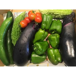 野菜詰め合わせ 自家栽培(野菜)