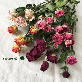 薔薇のドライフラワー約32個のミックスセット【82】(ドライフラワー)