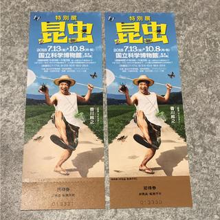 昆虫展チケット(美術館/博物館)