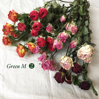 薔薇のドライフラワー約40個のミックスセット【92】(ドライフラワー)