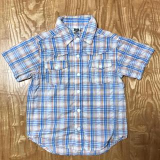 リトルベアークラブ(LITTLE BEAR CLUB)のサイズ100  LITTLE BEAR CLUB  半袖シャツ(Tシャツ/カットソー)
