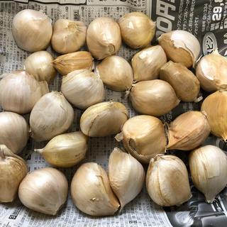 ジャンボにんにく 群馬県産 1kg (野菜)