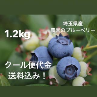 korokoro様専用 東京分(フルーツ)