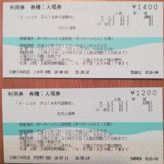 チームラボ チケット あべのハルカス美術館(美術館/博物館)