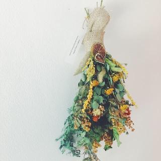 ミモザとユーカリのナチュラルスワッグB 紅花 ライム(ドライフラワー)