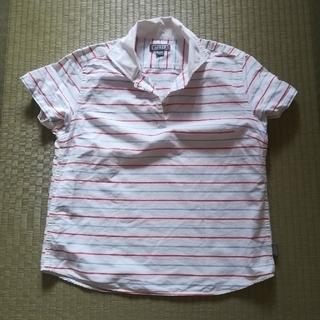 エーグル(AIGLE)のAIGLE レディースシャツ(Tシャツ(半袖/袖なし))